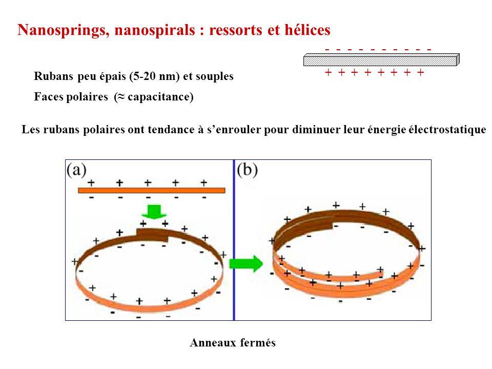 Nanosprings, nanospirals : ressorts et hélices Rubans peu épais (5-20 nm) et souples Faces polaires ( capacitance) + + + + - - - - - Les rubans polair