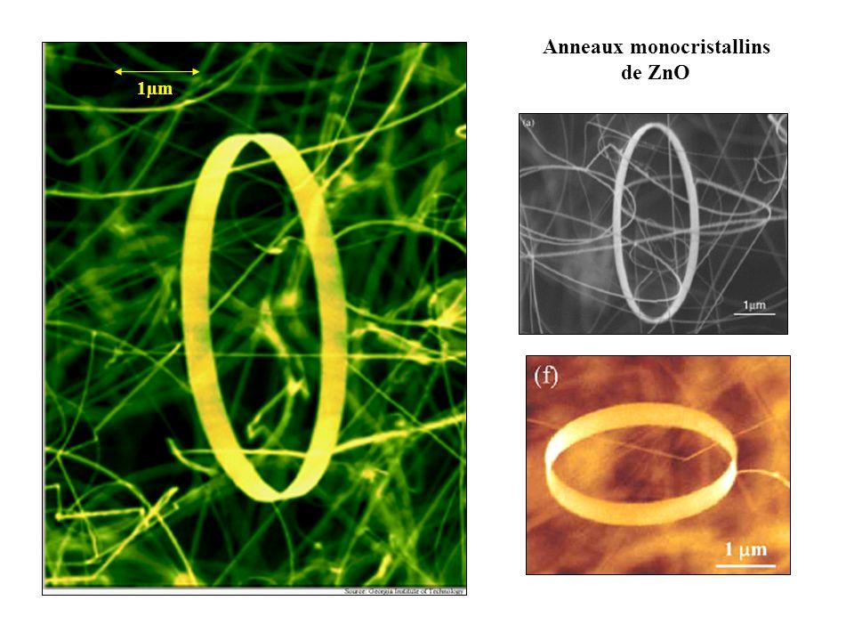 1µm Anneaux monocristallins de ZnO