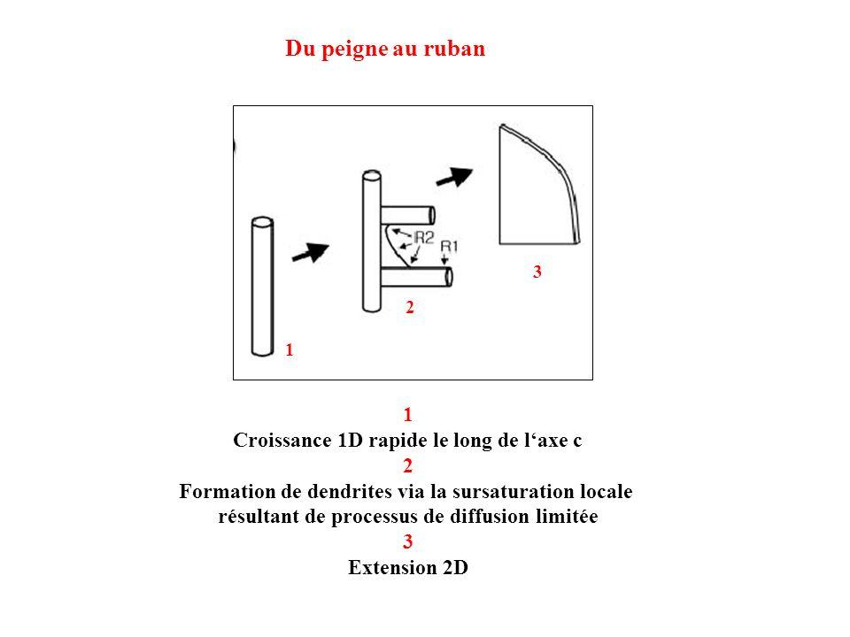 1 Croissance 1D rapide le long de laxe c 2 Formation de dendrites via la sursaturation locale résultant de processus de diffusion limitée 3 Extension 2D Du peigne au ruban 1 2 3