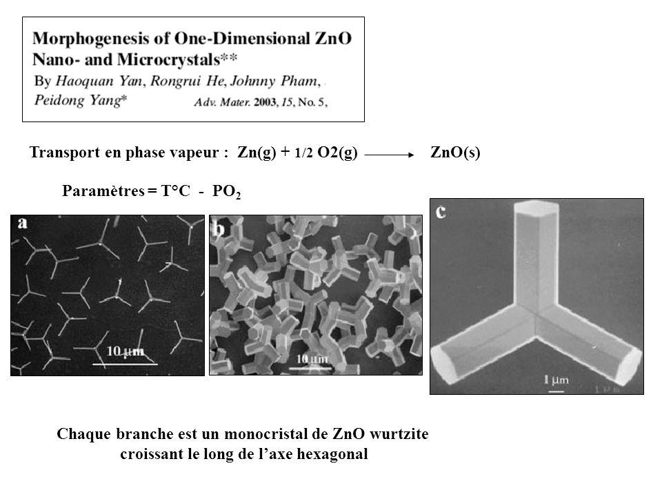 Paramètres = T°C - PO 2 Transport en phase vapeur : Zn(g) + 1/2 O2(g) ZnO(s) Chaque branche est un monocristal de ZnO wurtzite croissant le long de laxe hexagonal