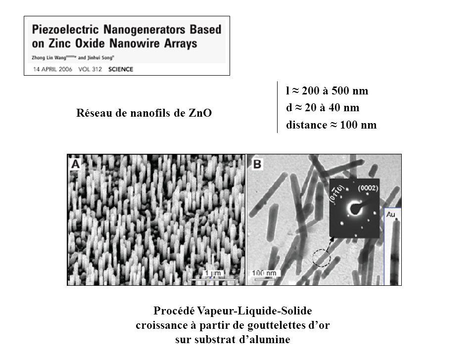 Réseau de nanofils de ZnO Procédé Vapeur-Liquide-Solide croissance à partir de gouttelettes dor sur substrat dalumine l 200 à 500 nm d 20 à 40 nm distance 100 nm