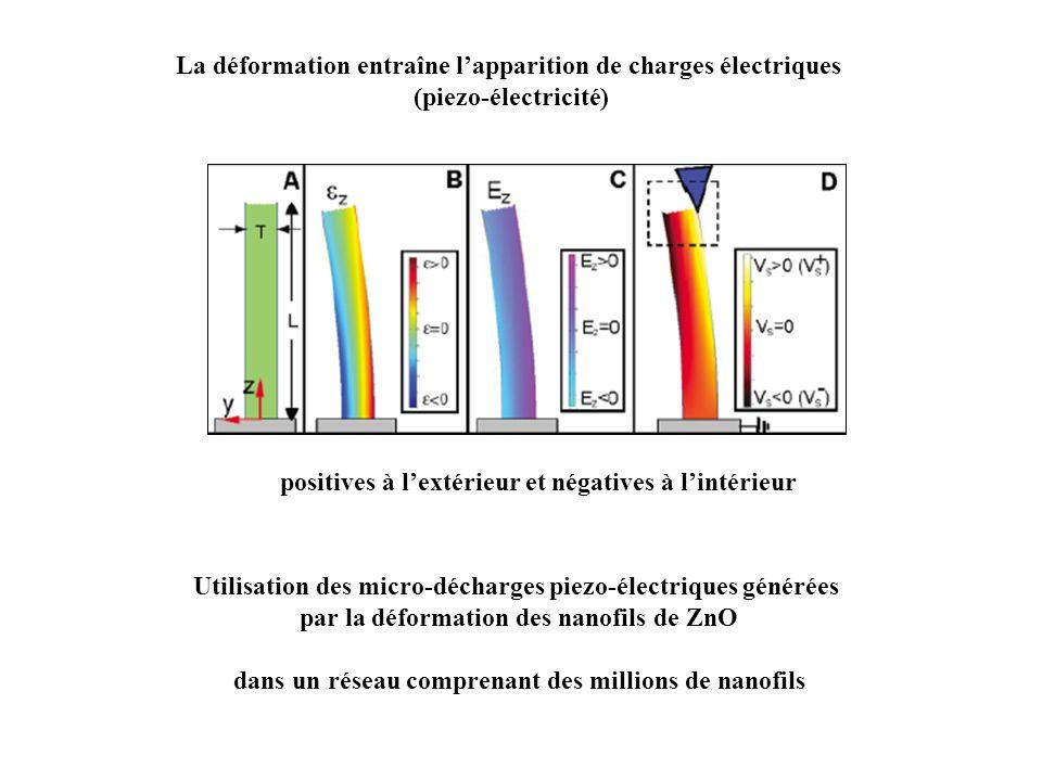 La déformation entraîne lapparition de charges électriques (piezo-électricité) positives à lextérieur et négatives à lintérieur Utilisation des micro-décharges piezo-électriques générées par la déformation des nanofils de ZnO dans un réseau comprenant des millions de nanofils