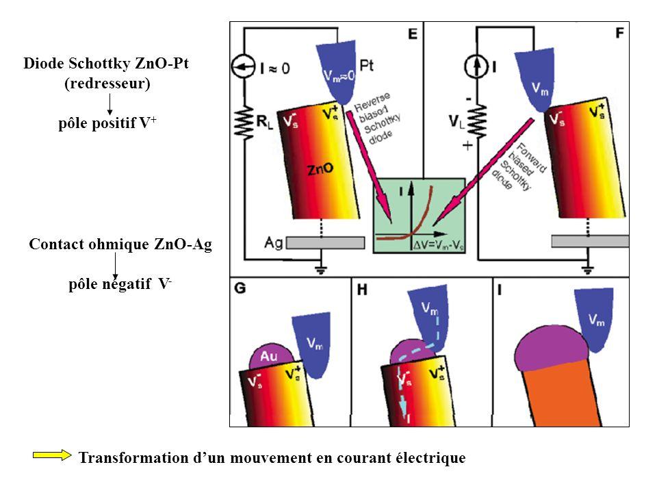 Diode Schottky ZnO-Pt (redresseur) pôle positif V + Contact ohmique ZnO-Ag pôle négatif V - Transformation dun mouvement en courant électrique