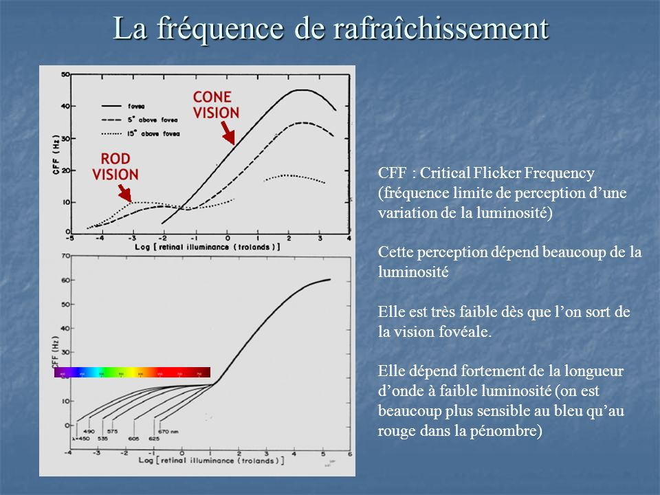 La fréquence de rafraîchissement CFF : Critical Flicker Frequency (fréquence limite de perception dune variation de la luminosité) Cette perception dé