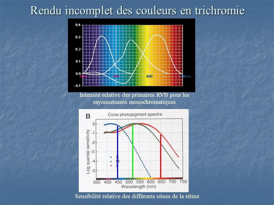 Rendu incomplet des couleurs en trichromie Intensité relative des primaires RVB pour les rayonnements monochromatiques Sensibilité relative des différents cônes de la rétine