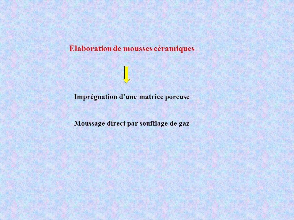 1. Imprégnation dune matrice poreuse Test doursins