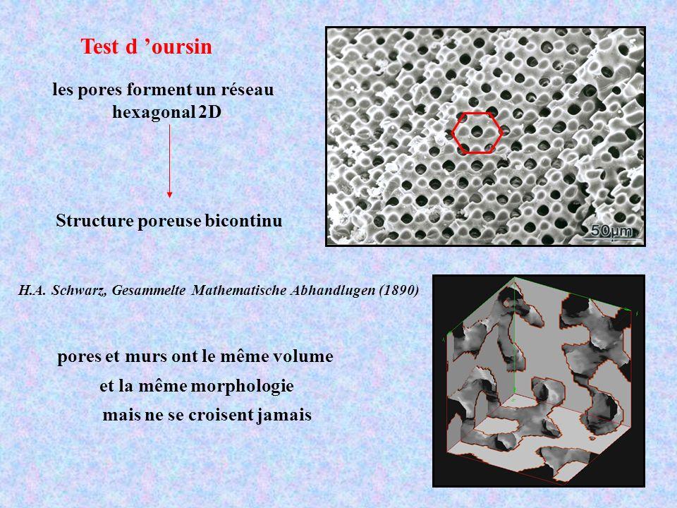 Test d oursin Structure poreuse bicontinu pores et murs ont le même volume et la même morphologie mais ne se croisent jamais les pores forment un rése