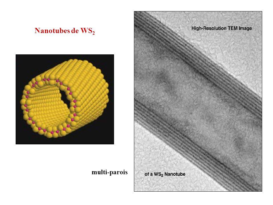 Nanotubes de WS 2 multi-parois