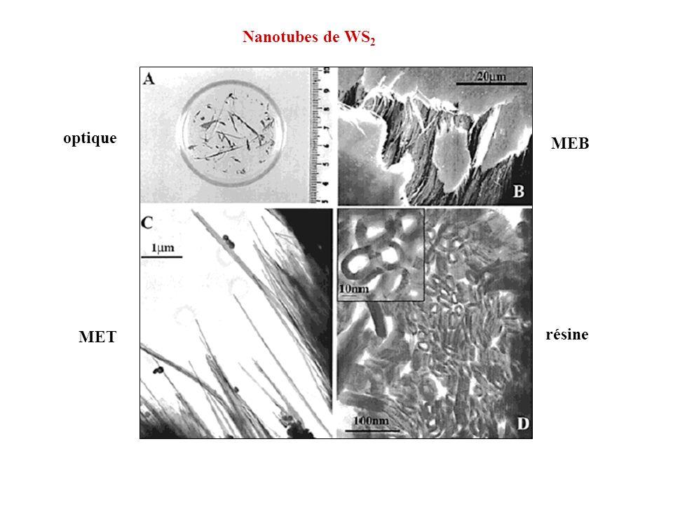 Nanotubes de WS 2 optique MEB MET résine