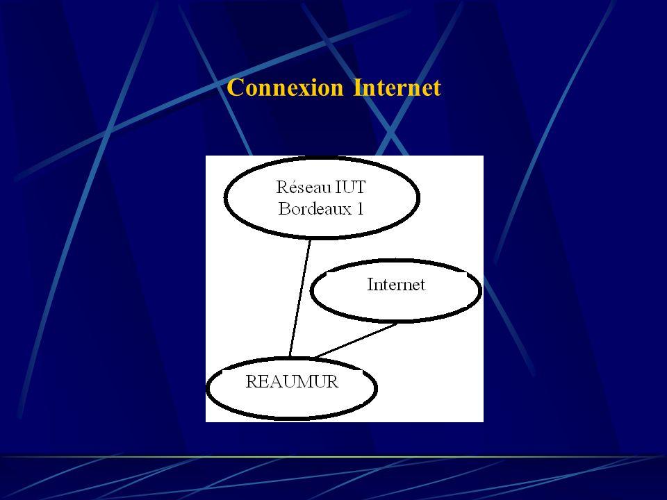 Exemples de fonctionnalités désirées Transmission physique (câble, satellite, wifi, …) Choix du chemin pris dans le réseau Reprises en cas derreurs Dialogue entre processus distants...