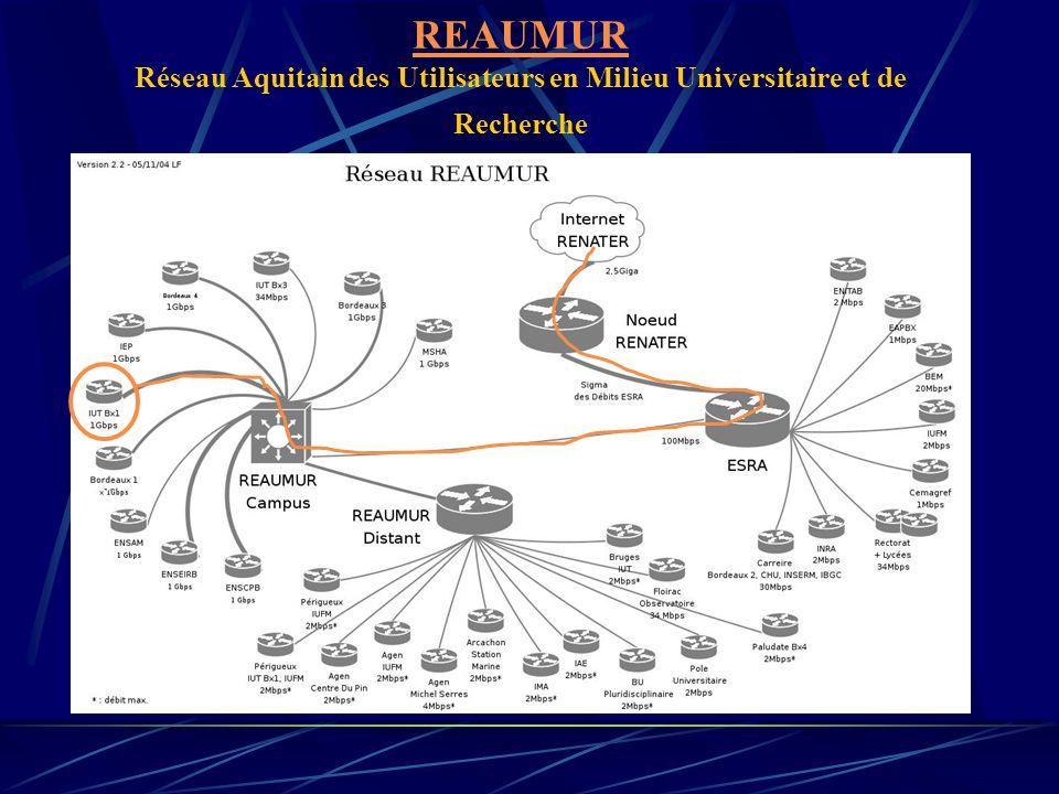 REAUMUR REAUMUR Réseau Aquitain des Utilisateurs en Milieu Universitaire et de Recherche