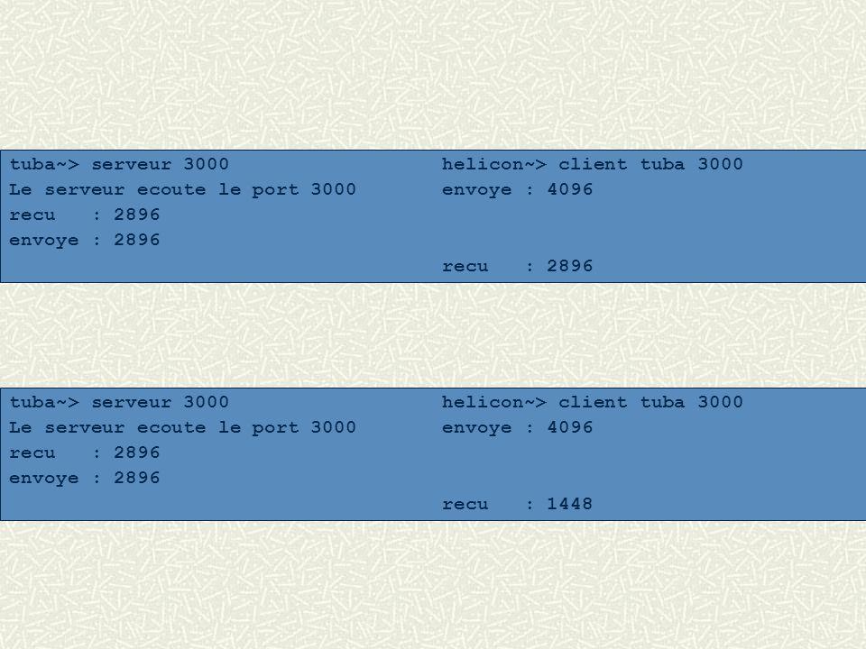 tuba~> serveur 3000 helicon~> client tuba 3000 Le serveur ecoute le port 3000envoye : 4096 recu : 2896 envoye : 2896 recu : 1448 tuba~> serveur 3000 h
