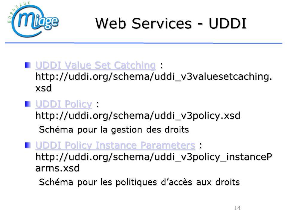 14 Web Services - UDDI UDDI Value Set CatchingUDDI Value Set Catching : http://uddi.org/schema/uddi_v3valuesetcaching. xsd UDDI Value Set Catching UDD