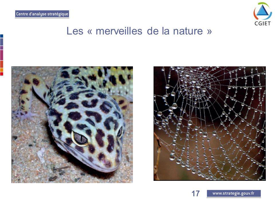 17 Les « merveilles de la nature »