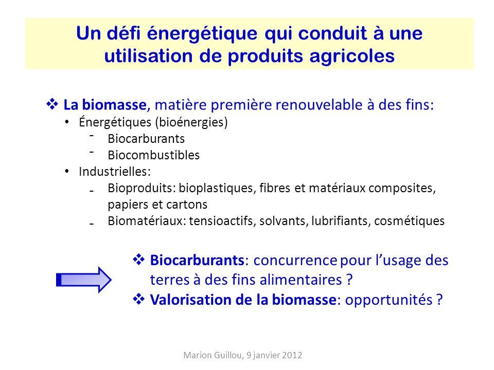 Un défi énergétique qui conduit à une utilisation de produits agricoles La biomasse, matière première renouvelable à des fins: Énergétiques (bioénergies) Biocarburants Biocombustibles Industrielles: Bioproduits: bioplastiques, fibres et matériaux composites, papiers et cartons Biomatériaux: tensioactifs, solvants, lubrifiants, cosmétiques Biocarburants: concurrence pour lusage des terres à des fins alimentaires .