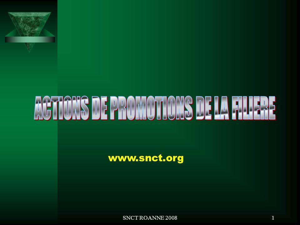SNCT ROANNE 200812 4.Région Ile-de-France / Centre : représentant du SNCT, M.