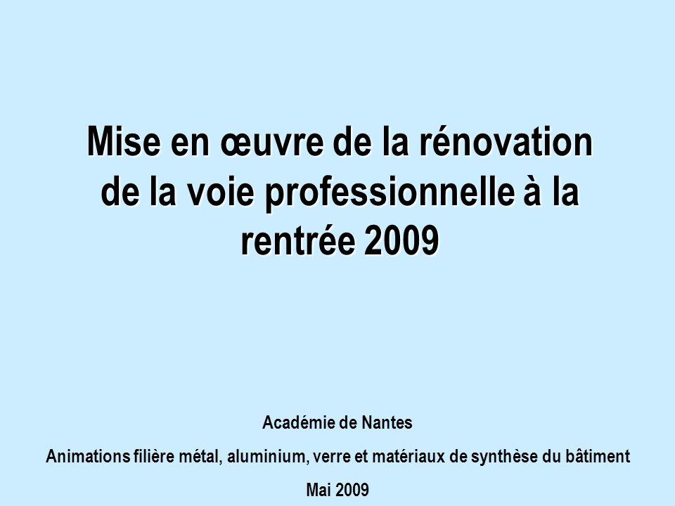Mise en œuvre de la rénovation de la voie professionnelle à la rentrée 2009 Académie de Nantes Animations filière métal, aluminium, verre et matériaux de synthèse du bâtiment Mai 2009