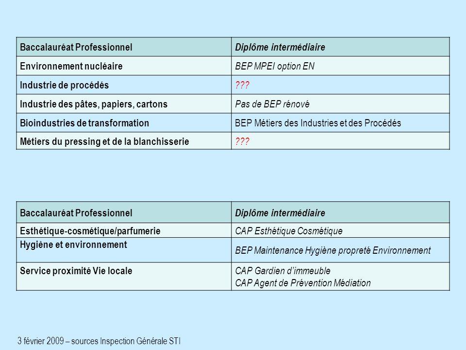 Baccalauréat Professionnel Diplôme intermédiaire Environnement nucléaire BEP MPEI option EN Industrie de procédés ??.