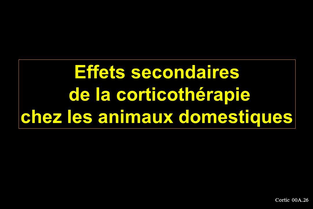 Cortic 00A.26 Effets secondaires de la corticothérapie chez les animaux domestiques