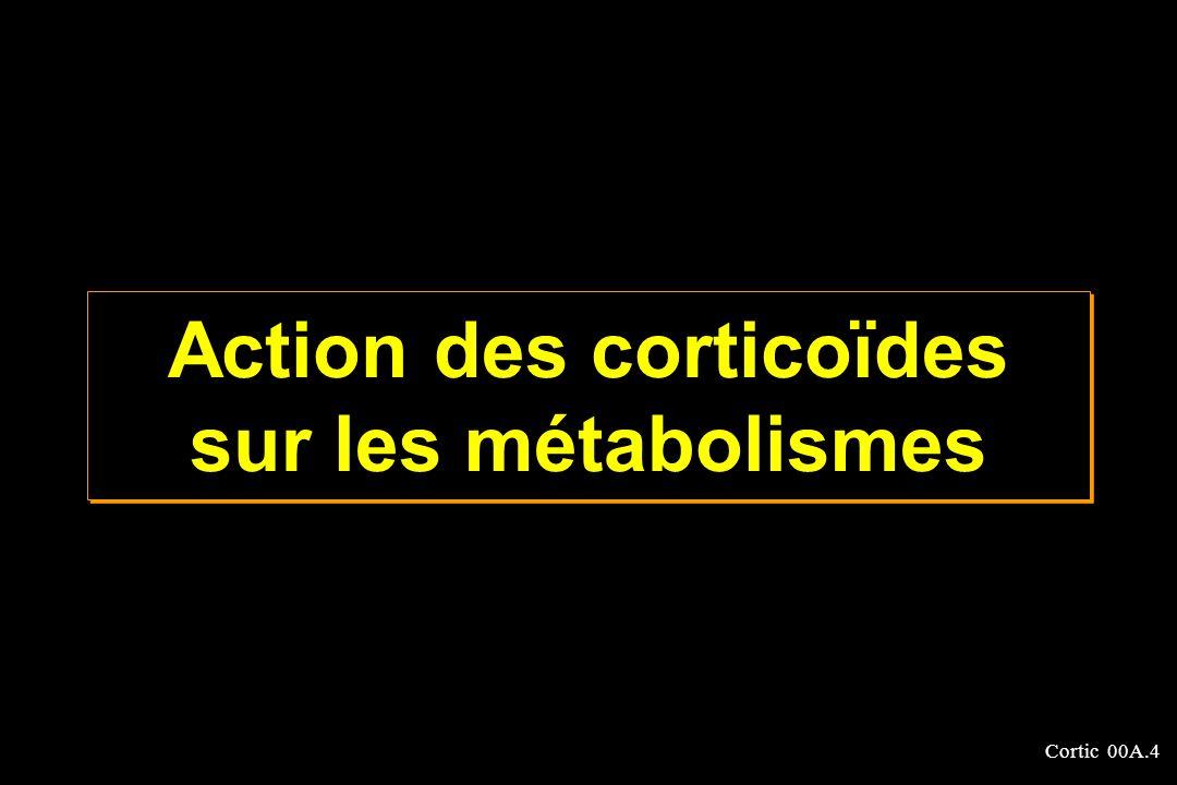 Cortic 00A.4 Action des corticoïdes sur les métabolismes