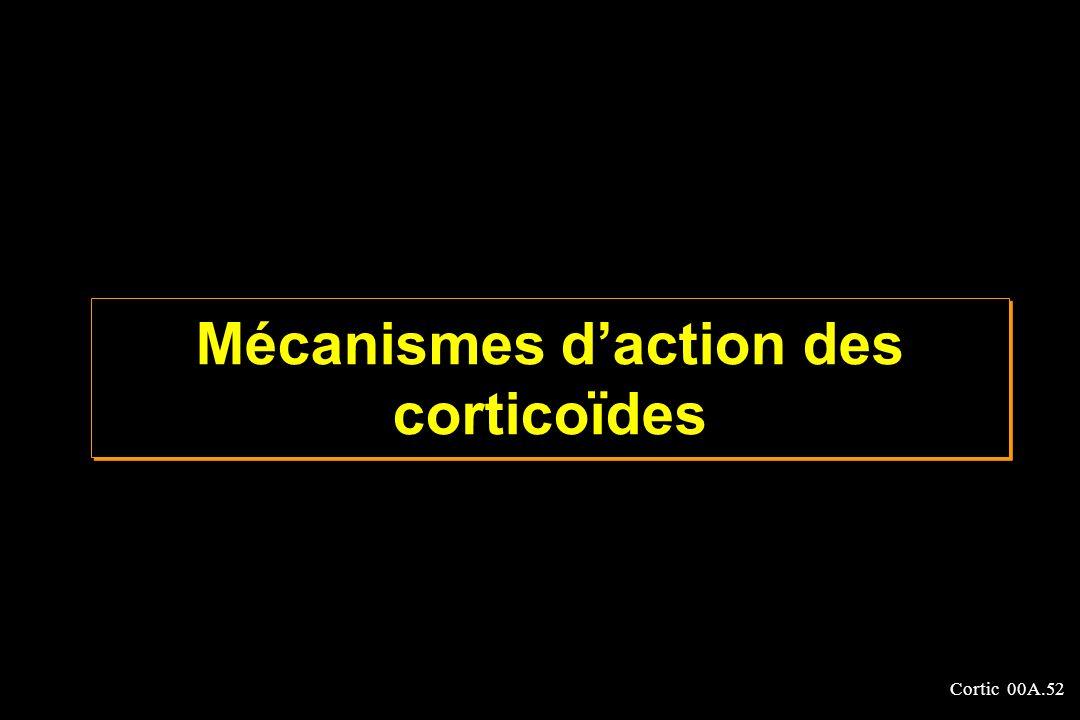 Cortic 00A.52 Mécanismes daction des corticoïdes