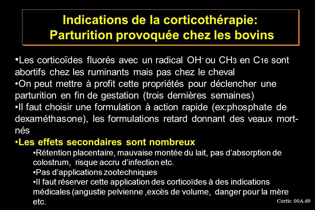 Cortic 00A.69 Les corticoïdes fluorés avec un radical OH - ou CH 3 en C 16 sont abortifs chez les ruminants mais pas chez le cheval On peut mettre à p