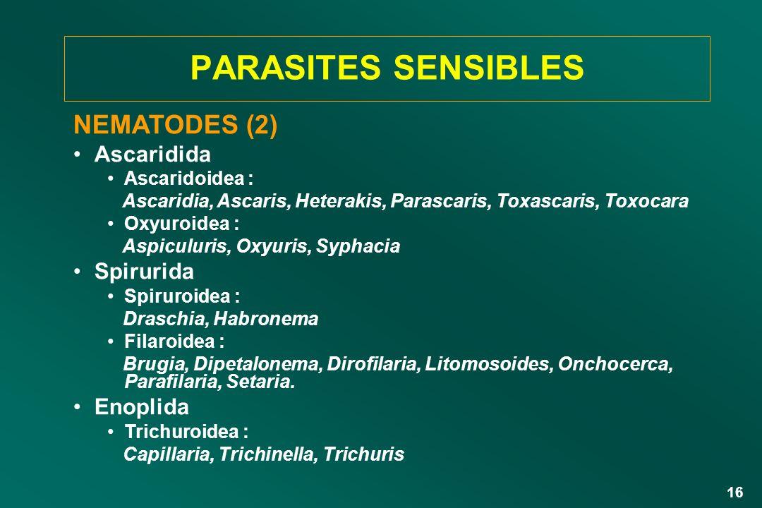 16 NEMATODES (2) Ascaridida Ascaridoidea : Ascaridia, Ascaris, Heterakis, Parascaris, Toxascaris, Toxocara Oxyuroidea : Aspiculuris, Oxyuris, Syphacia