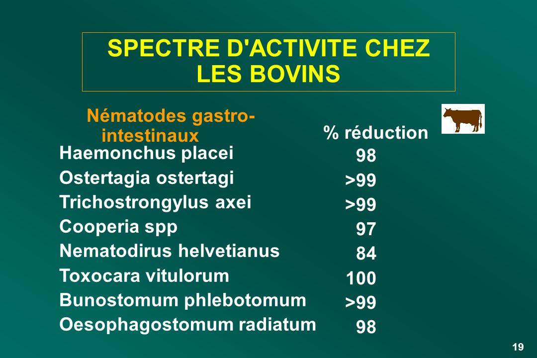 19 SPECTRE D'ACTIVITE CHEZ LES BOVINS Nématodes gastro- intestinaux Haemonchus placei Ostertagia ostertagi Trichostrongylus axei Cooperia spp Nematodi