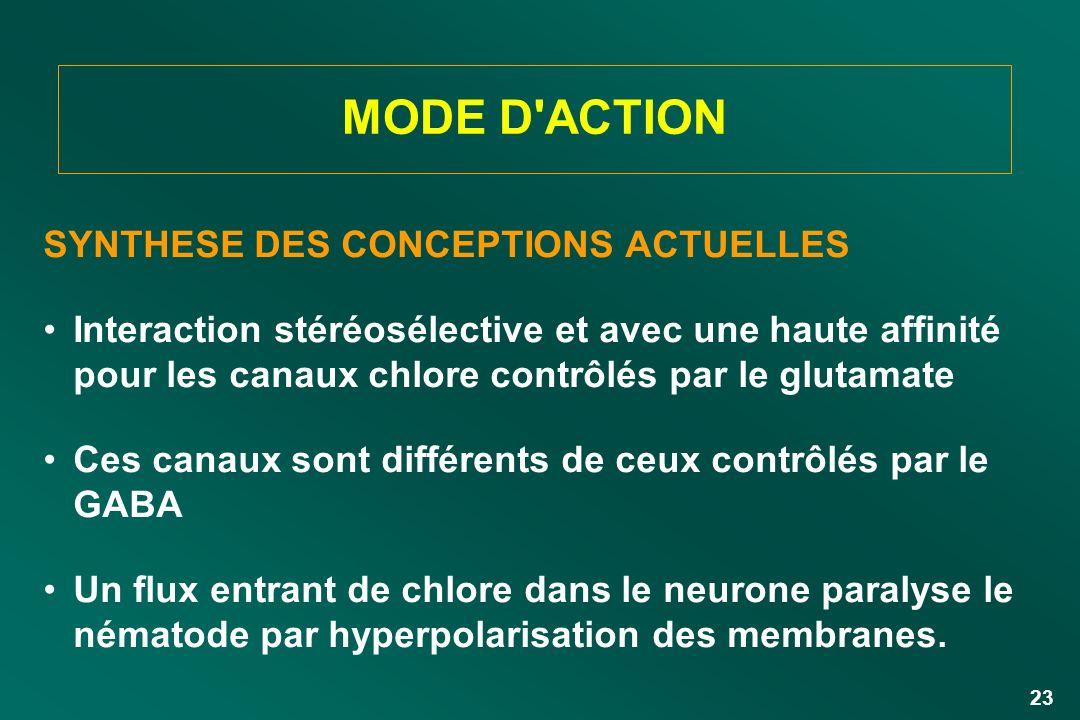 23 SYNTHESE DES CONCEPTIONS ACTUELLES Interaction stéréosélective et avec une haute affinité pour les canaux chlore contrôlés par le glutamate Ces can