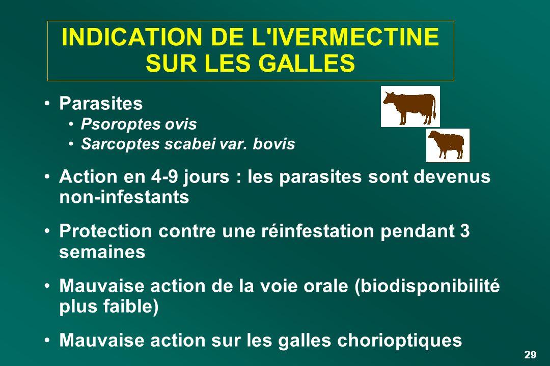 29 INDICATION DE L'IVERMECTINE SUR LES GALLES Parasites Psoroptes ovis Sarcoptes scabei var. bovis Action en 4-9 jours : les parasites sont devenus no