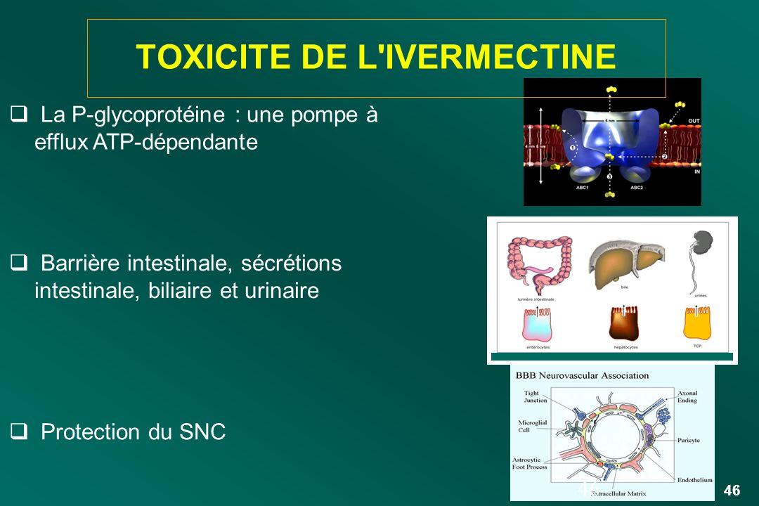 46 Barrière intestinale, sécrétions intestinale, biliaire et urinaire Protection du SNC La P-glycoprotéine : une pompe à efflux ATP-dépendante 46 TOXI