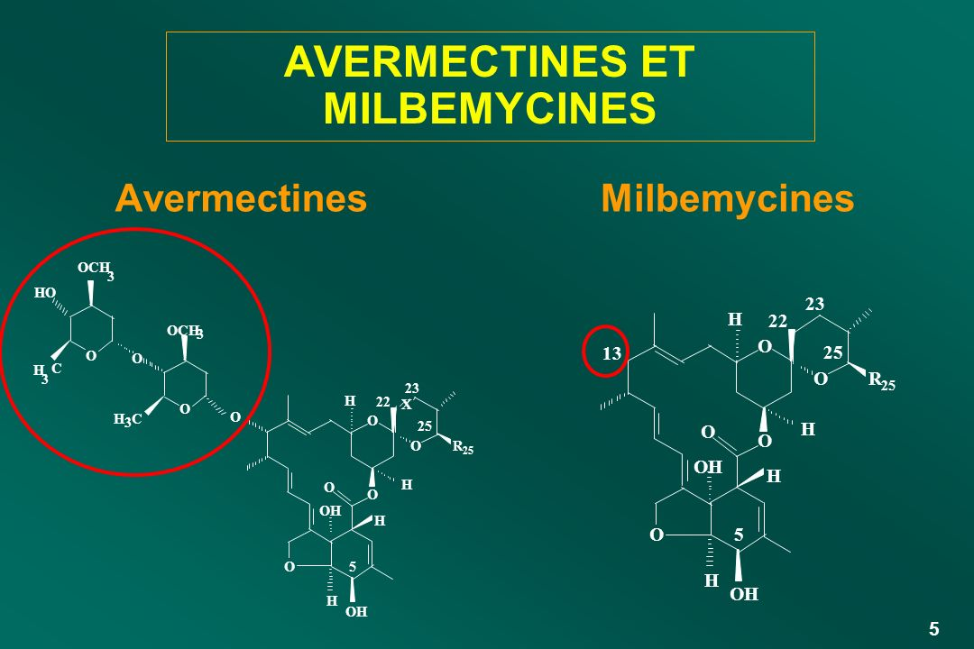 36 INDICATION DE LEPRINOMECTINE Similaire à celle de l Ivermectine Autorisée chez les animaux en lactation