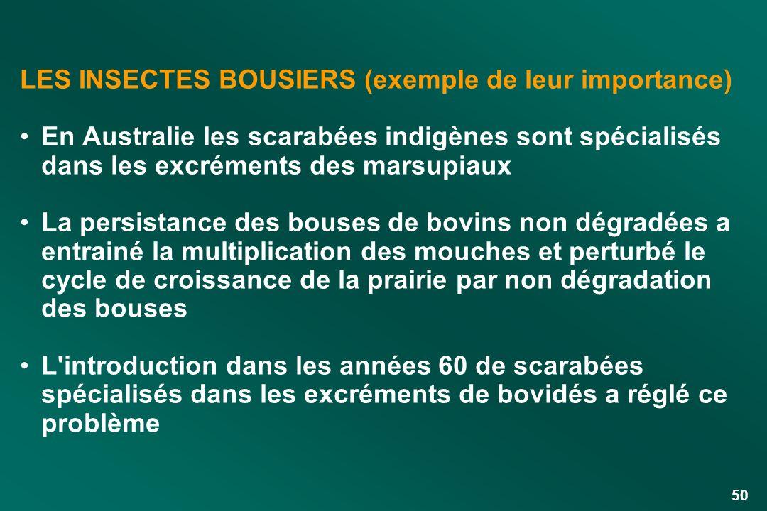 50 LES INSECTES BOUSIERS (exemple de leur importance) En Australie les scarabées indigènes sont spécialisés dans les excréments des marsupiaux La pers
