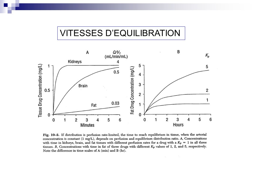 VITESSES DEQUILIBRATION