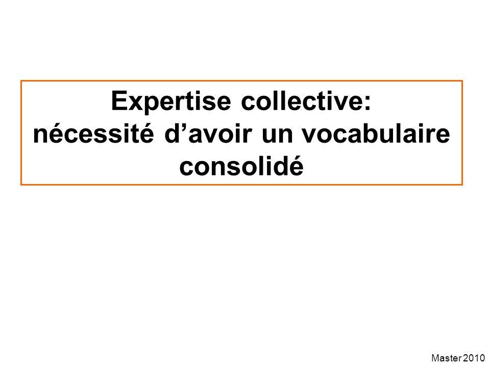 Master 2010 Expertise collective: nécessité davoir un vocabulaire consolidé