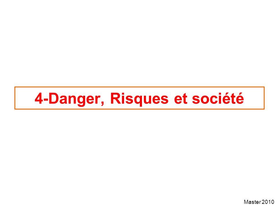Master 2010 4-Danger, Risques et société