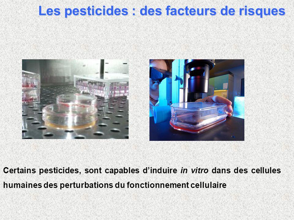 Certains pesticides, sont capables dinduire in vitro dans des cellules humaines des perturbations du fonctionnement cellulaire Les pesticides : des facteurs de risques