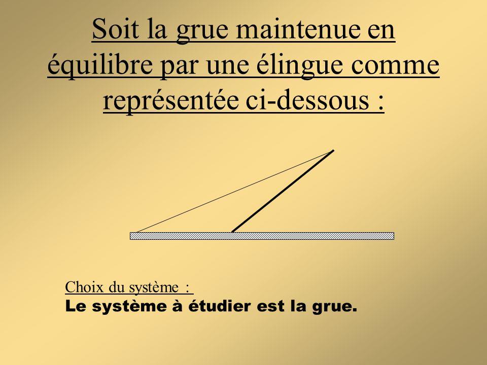 Soit la grue maintenue en équilibre par une élingue comme représentée ci-dessous : Choix du système : Le système à étudier est la grue.