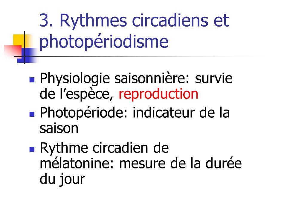 3. Rythmes circadiens et photopériodisme Physiologie saisonnière: survie de lespèce, reproduction Photopériode: indicateur de la saison Rythme circadi