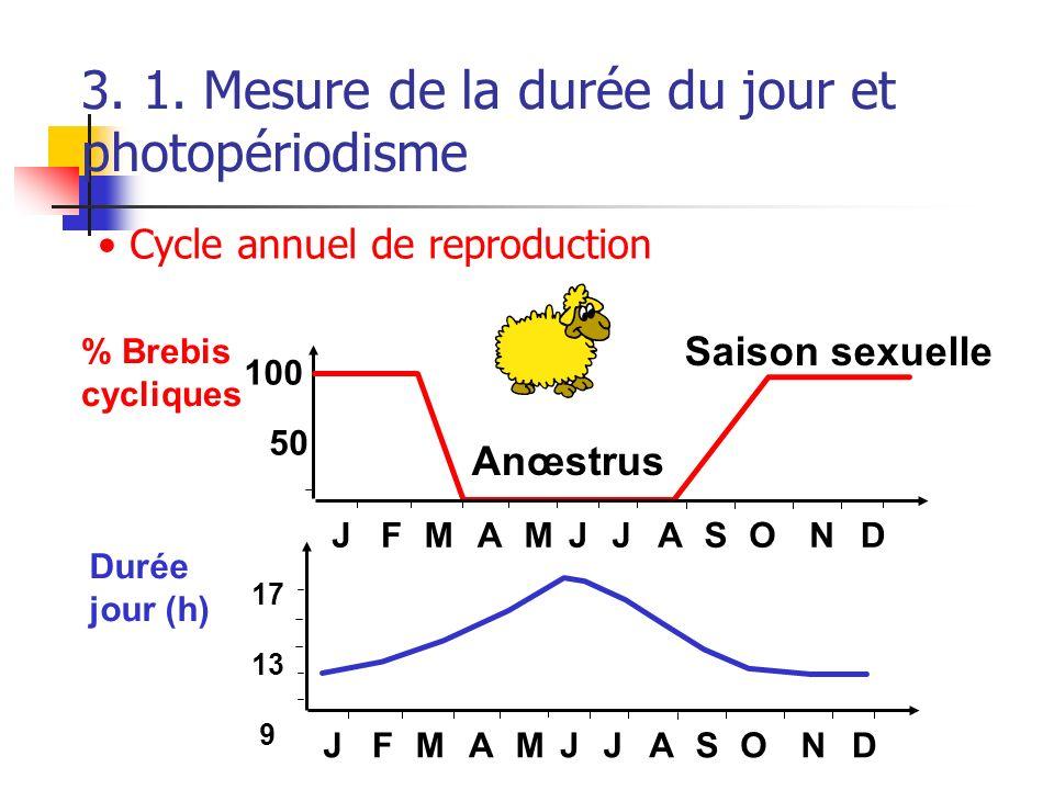 3. 1. Mesure de la durée du jour et photopériodisme % Brebis cycliques Durée jour (h) 100 50 17 13 9 JFMAMJJASOND JFMAMJJASOND Anœstrus Saison sexuell