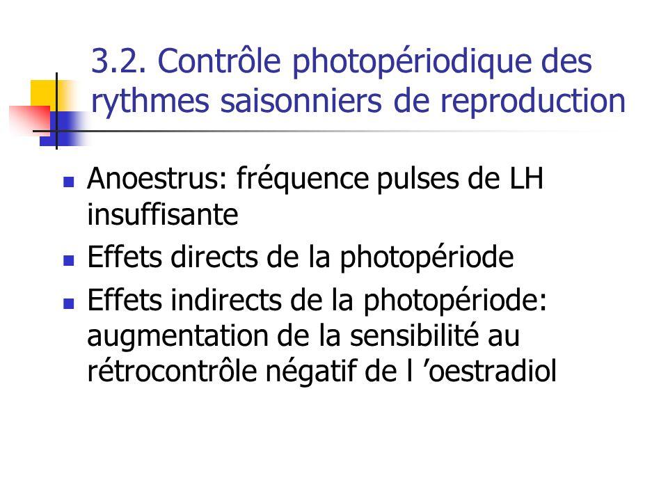 Anoestrus: fréquence pulses de LH insuffisante Effets directs de la photopériode Effets indirects de la photopériode: augmentation de la sensibilité a