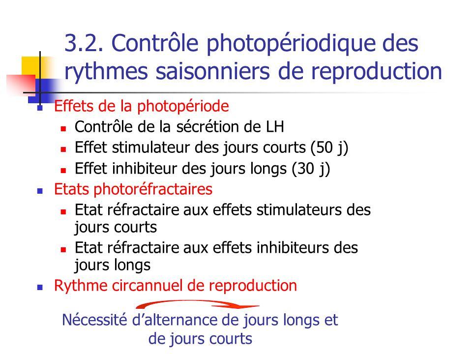 Effets de la photopériode Contrôle de la sécrétion de LH Effet stimulateur des jours courts (50 j) Effet inhibiteur des jours longs (30 j) Etats photo