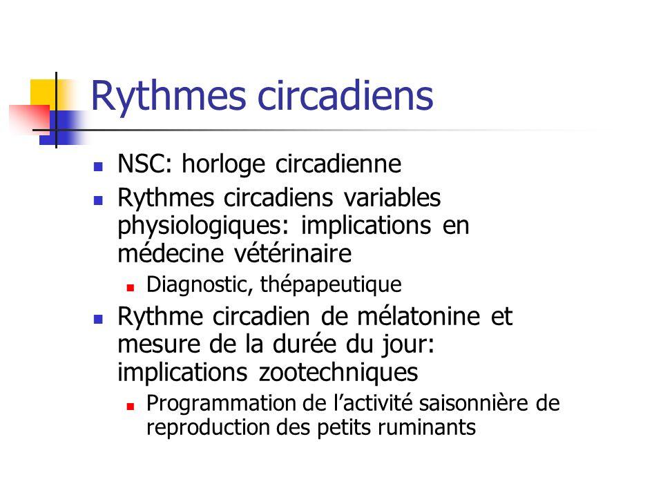 Rythmes circadiens NSC: horloge circadienne Rythmes circadiens variables physiologiques: implications en médecine vétérinaire Diagnostic, thépapeutiqu