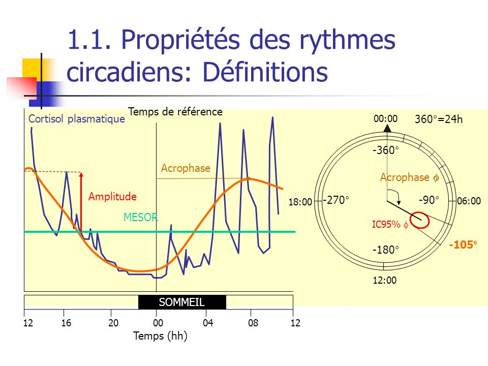 1.1. Propriétés des rythmes circadiens: Définitions Temps (hh) 12162000040812 Cortisol plasmatique SOMMEIL Temps de référence Acrophase MESOR Amplitud