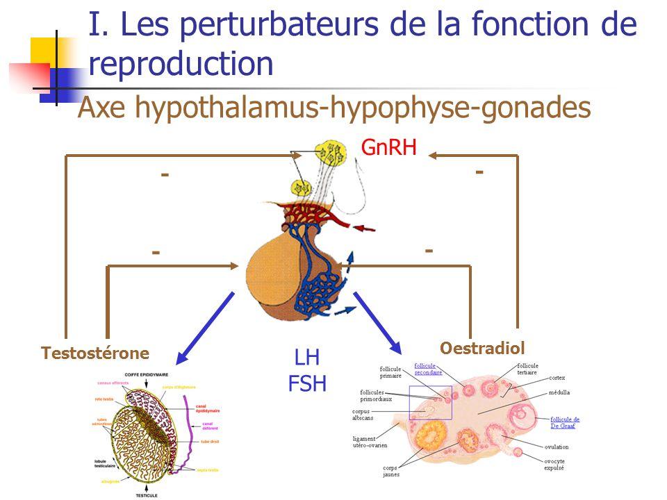 I. Les perturbateurs de la fonction de reproduction Axe hypothalamus-hypophyse-gonades LH FSH Testostérone Oestradiol - - - - GnRH