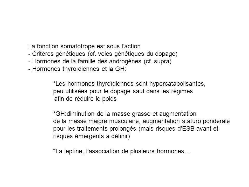 La fonction somatotrope est sous laction - Critères génétiques (cf. voies génétiques du dopage) - Hormones de la famille des androgènes (cf. supra) -