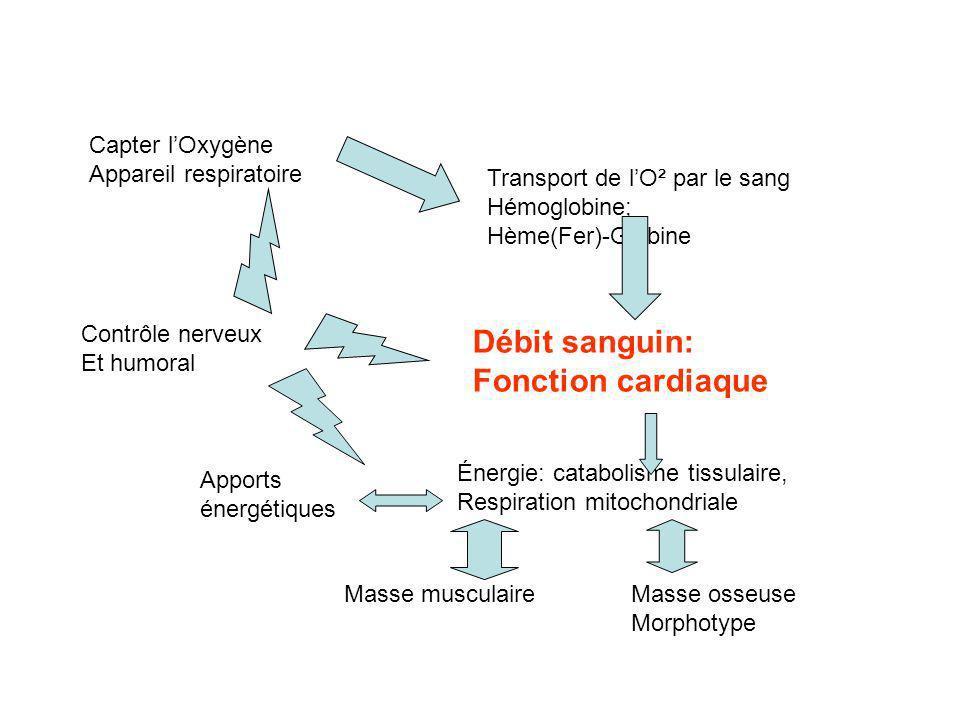 Le dopage génétique : Injection de cellules réparatrices modifiées, de cellules souches modifiées - Augmenter le nombre des myofibrilles - Cultures de chondrocytes réinjecté - Gènes « réparateurs » de tendon Clonage, modifications du génotype pour sélectionner un morphotype