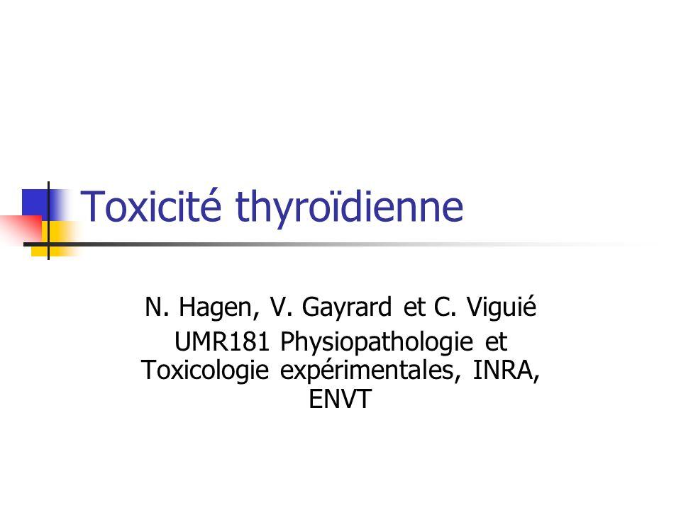 Toxicité thyroïdienne N. Hagen, V. Gayrard et C. Viguié UMR181 Physiopathologie et Toxicologie expérimentales, INRA, ENVT