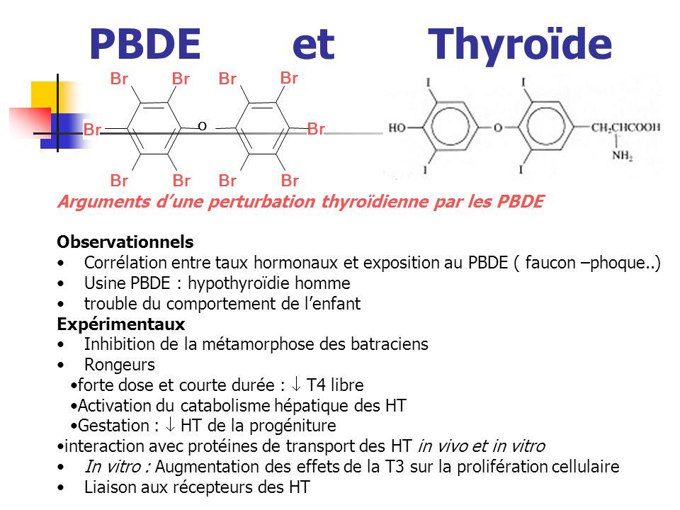 PBDE et Thyroïde Arguments dune perturbation thyroïdienne par les PBDE Observationnels Corrélation entre taux hormonaux et exposition au PBDE ( faucon