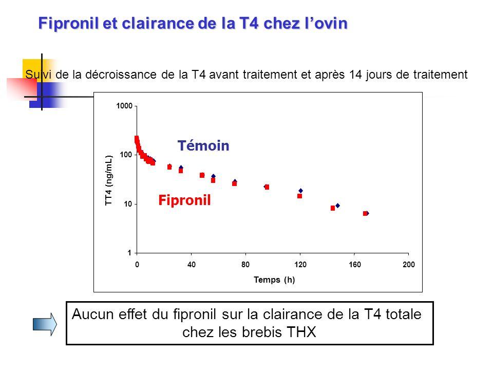 Aucun effet du fipronil sur la clairance de la T4 totale chez les brebis THX Suivi de la décroissance de la T4 avant traitement et après 14 jours de t